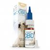 Aceite de CBD 4% para perros