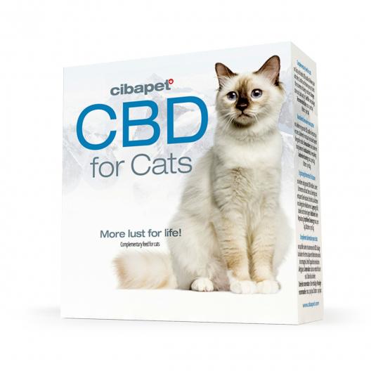 Pastillas de CBD para gatos