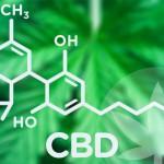 DrugsInc. entrevista al eCommerce Manager de Cibdol